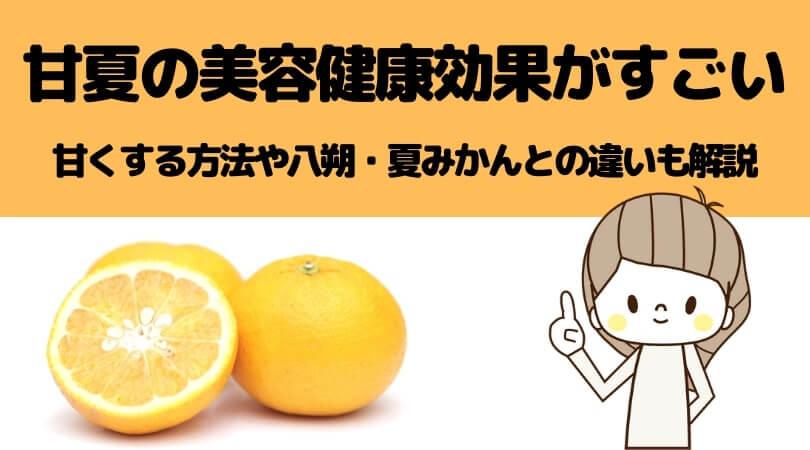 【甘夏大百科】栄養・カロリー・健康効能・八朔や夏みかんとの違い・見分け方まとめ