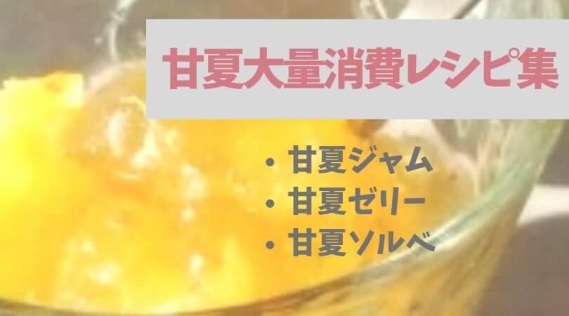 【甘夏の大量消費に】甘夏ゼリー・ジャム・ソルベの簡単レシピ
