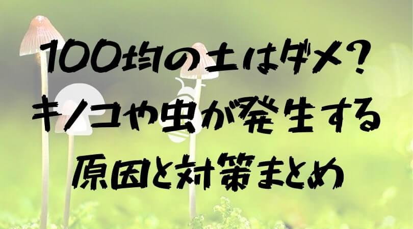 ダイソーの観葉・多肉植物の土は虫&キノコに注意!原因・対策まとめ