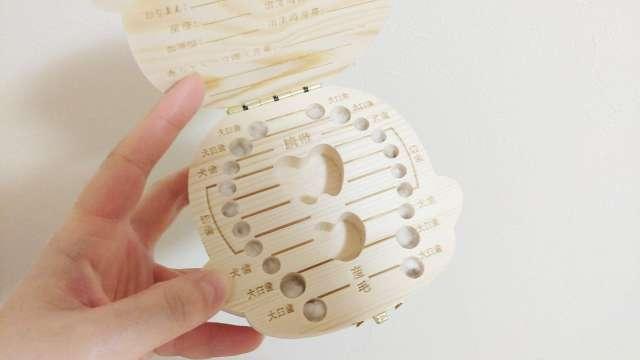乳歯保存ケースは記録が残せるタイプがおすすめ!人気商品も紹介